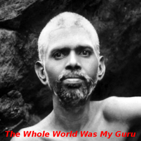 Whole world guru