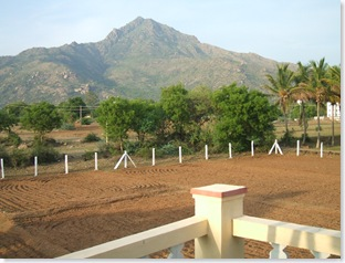 Arunachala from Brindavanam, Tiruvannamalai