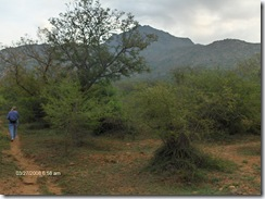 Carol on path, Arunachala in background