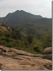 Arunachala from Papaji's cave area