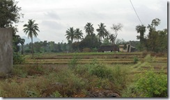 View from village