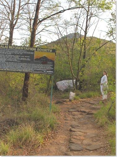 The path forfs, Skandashram to the right