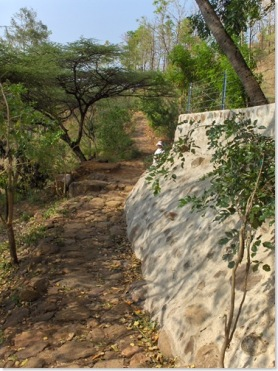 Path back to Ramanasramam