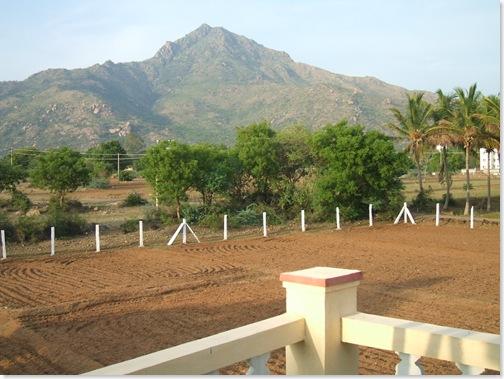 Arunachala from Brindavanam