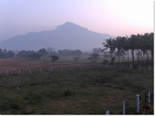 Arunachala in early morning light
