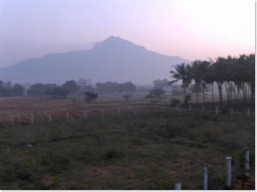 Arunachala in early morning light
