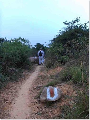 pradakshina trail