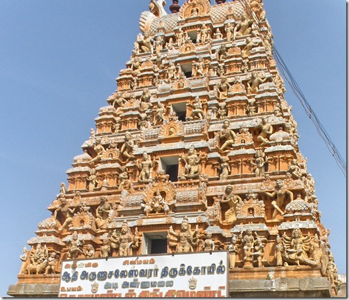Adi Annamalai goporum close up