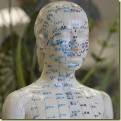 Female_Acupuncture_Model