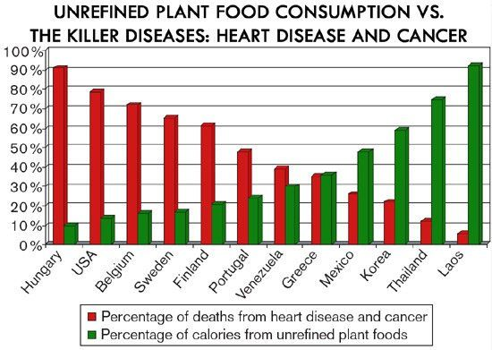 Whole Food Plant Based Diet Lung Cancer