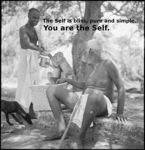 You are the Self