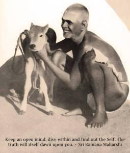 Bhagavan with calf