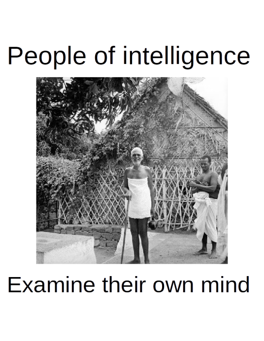 People of intelligence examine their own minds
